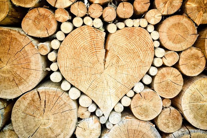 木材の特徴を知って店舗づくりに役立てよう!無垢材・集成材・突き板の違いとは?