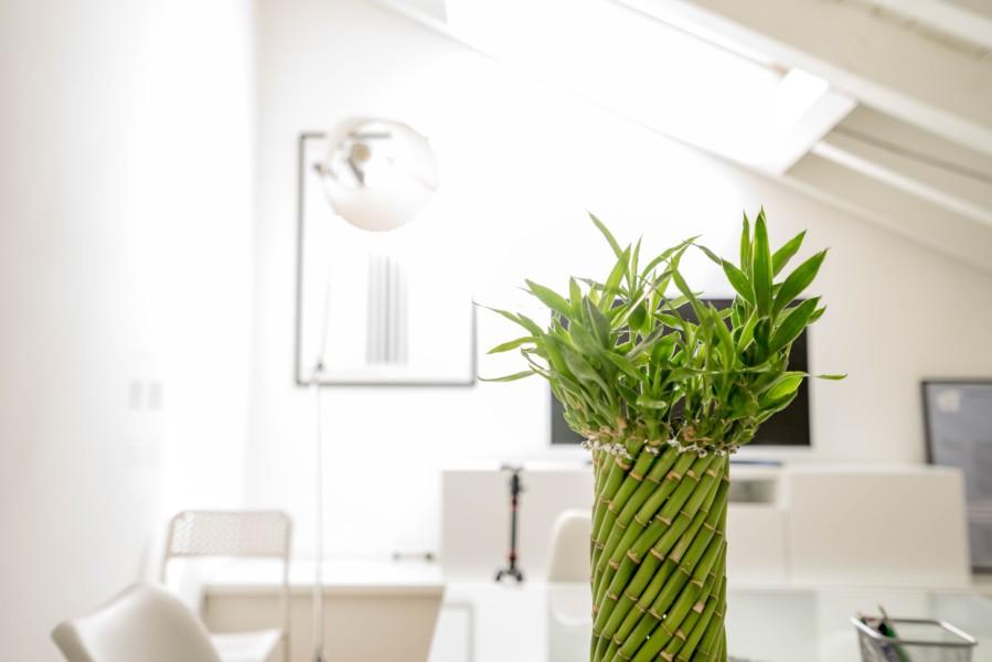 鍼灸整骨・整体院は清潔感と安心感が重要