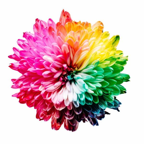 色を意識してリラックス効果を与える