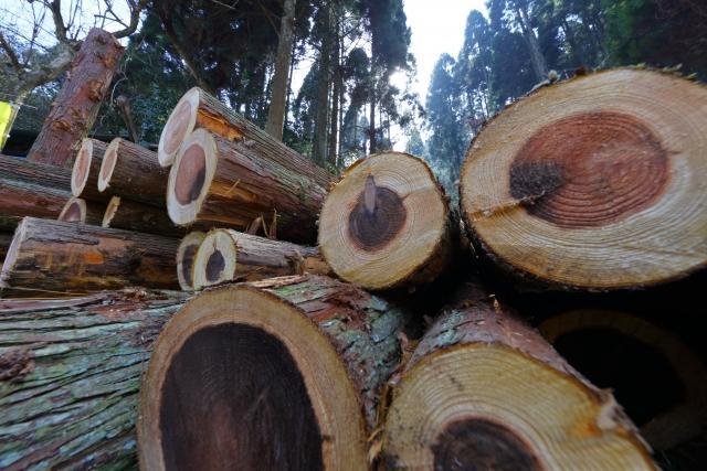 緩和策④木造のお店は3つの条件をクリアする