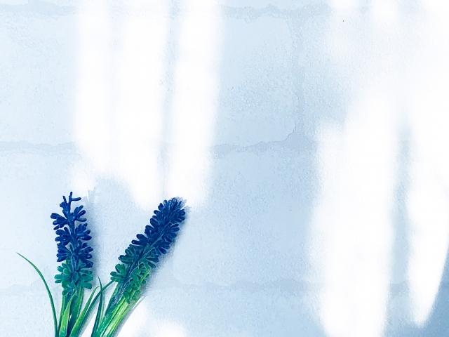 外観が与える効果②院内の雰囲気を伝えやすくできる
