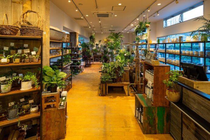 IN NATURAL 小田原店