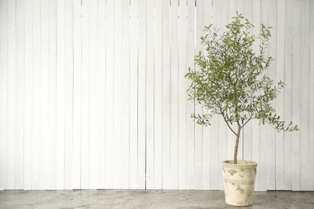 内装や家具で使用される木材の見た目はどのような効果があるのか